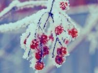 Зима! Ура!