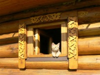 Ковчег - Кто в домике живет? :)