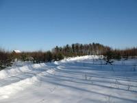 Дорога в поселении зимой