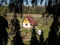 Ковчег - Пасека рядом с домом