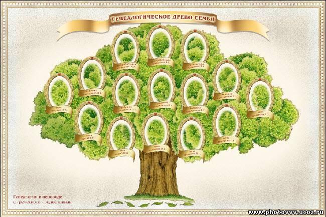 История составление генеологического дерева семьи Бесплатная база цифровых фотографий